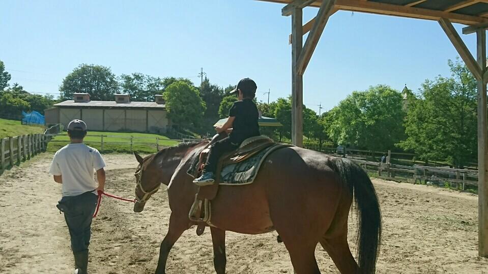 ハーベストの丘の乗馬体験は、係の人がひいてくれるので子供でも安心して乗馬できます。