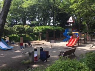 県立東高根森林公園には地味だけど遊具もあるので、小さいお子さんも楽しめます。