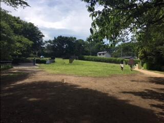 県立東高根森林公園の芝生は日陰がないので、暑い日は日除け対策が必要です。
